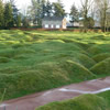 Trenches and Craters Newfoundland Memorial Park